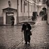 Под тяжестью лет и дождя