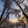 В зимнее небо