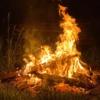 Огонь - начало всего ....