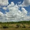 Легкая облачность на ясном небе
