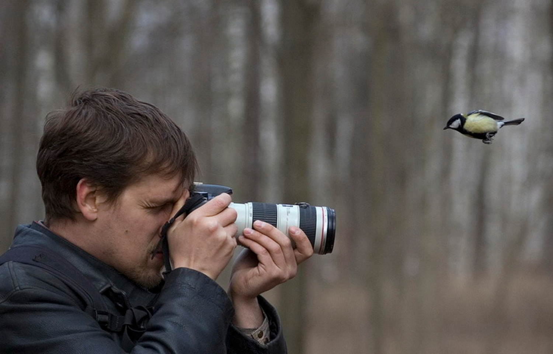 меня взгляд на птиц глазами фотографа десятка немцев тут