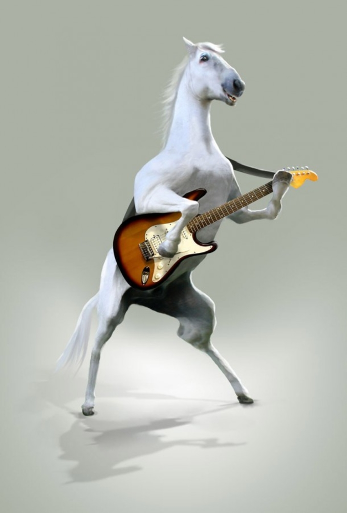 лошадь с гитарой картинка собак это
