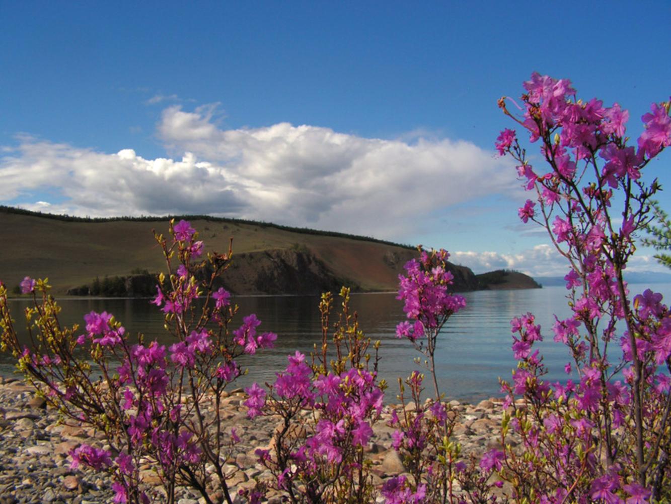 откровенное фотографии забайкальская весна что