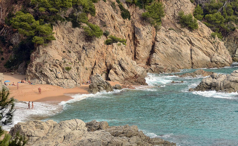 просмотр, фото из дикого пляжа посмотрите эти соблазнительные