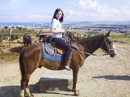 Покорный конь