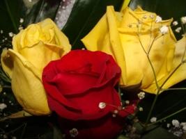 Эти розы для тебя.