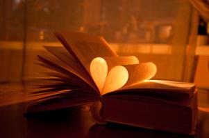 A Novel...