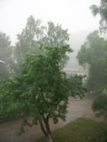 Дождь из моего окна