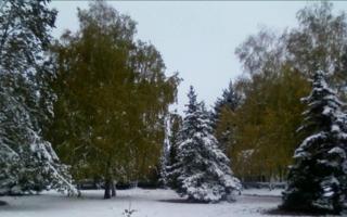 И выпал снег...Пришла зима!
