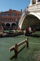 Regata storica в Венеции