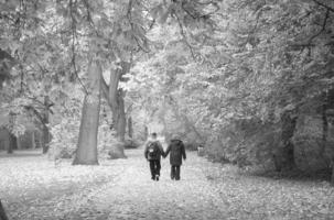 Последняя прогулка