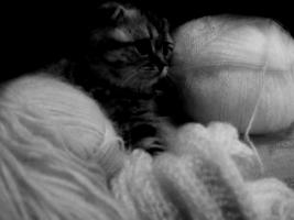 шарфик вяжем вместе