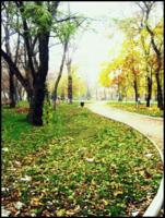 По осеннему парку