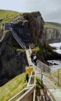 Обезьяний мостик