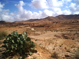 camino mexicano