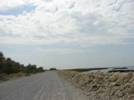 Дорога к лиманам