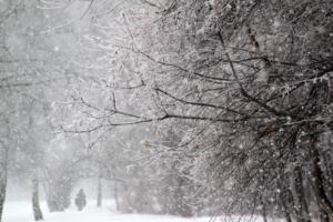 Снег скрипел подо мной