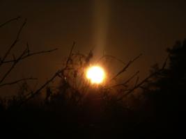 — Пятна на солнце. 1973г