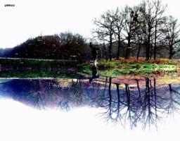 Диковинный пруд