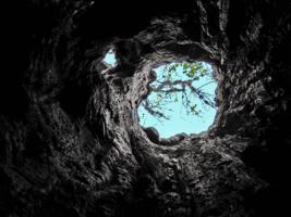"""Свет в конце """"тоннеля"""""""