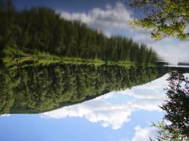 Гляжу в озёра синие