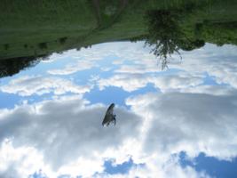 Сила притяжения неба