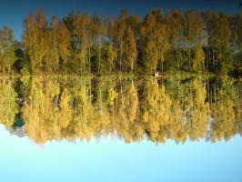 Отражение в тихой воде.