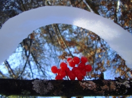Снежная арка