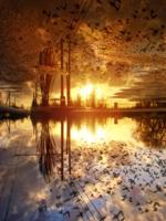 Осень, в небе жгут корабли...