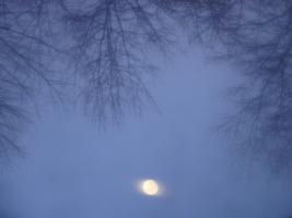 Вверх тормашками луна