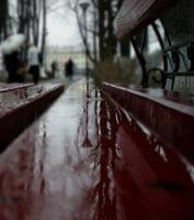 Дождливое отражение