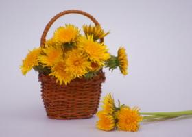 Корзинка желтого настроения