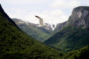 Сказочная Норвегия