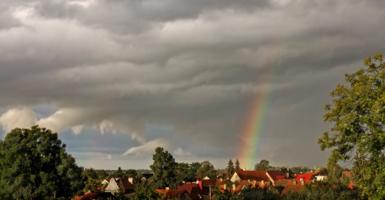 ...на дождь и радугу из окна.