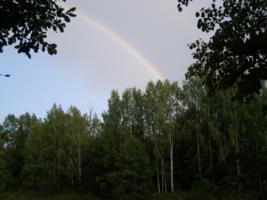 После дождичка.
