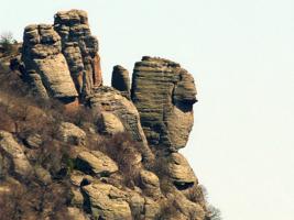 Каменный взгляд.