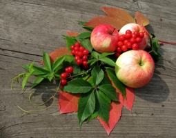 Подарок от Осени.