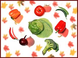 Овощной сентябрь