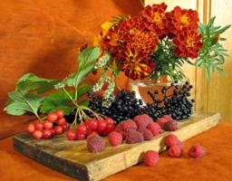 Цветы и ягоды.