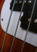 Звени и пой,гитарная струна!