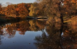 в парке хозяйничает осень