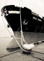 Морская надежда