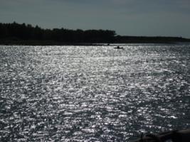 Подглядывая рыбные места