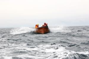 по морям,по волнам!