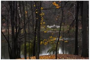 есть в графском парке пруд