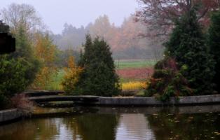 И Осень тихою вдовой...