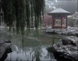 Серые сны Пекина.