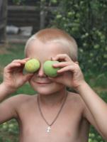 Глазные яблоки