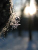 Под рассветным солнышком