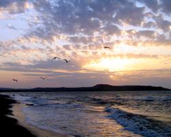 Вечер трогает небо вслепую...